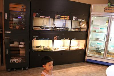台灣昆蟲館-可愛動物區