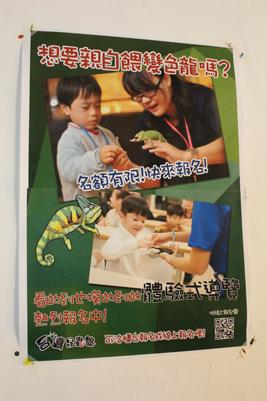 台灣昆蟲館-體驗餵動物