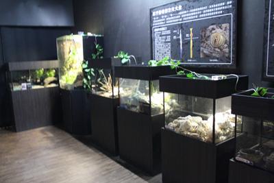 台灣昆蟲館-夜行區