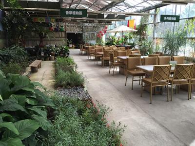 準園生態莊園-植物區