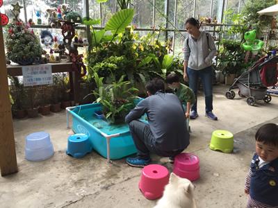 準園生態莊園-DIY活動