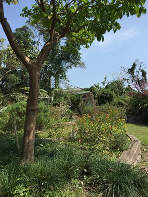 準園生態莊園