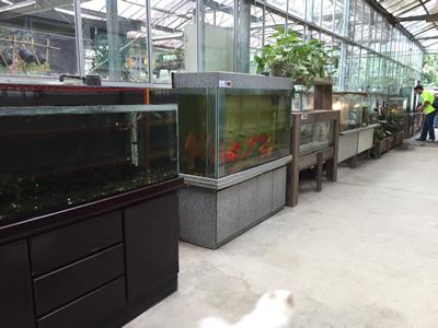 準園生態莊園-生態館
